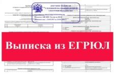 Подготовка документов для внесения изменений ООО 16 - kwork.ru