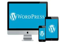 Адаптивный сайт на Wordpress 27 - kwork.ru
