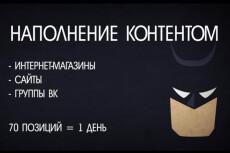 загружу в группу ВКонтакте 500 товаров 6 - kwork.ru