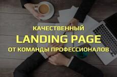 Создам продающий Landing Page под ключ 107 - kwork.ru
