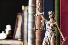 Напишу без воды статью на юридическую тематику 18 - kwork.ru