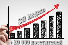 Увеличим количество посетителей сайта на 400 в сутки в течение месяца 13 - kwork.ru