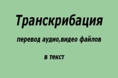 Транскрибация аудио, видео. Грамотный и быстрый набор текста 16 - kwork.ru