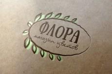 Дизайн логотипа по вашему эскизу 15 - kwork.ru
