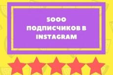 1000 подписчиков в ваш аккаунт инстаграм instagram 8 - kwork.ru