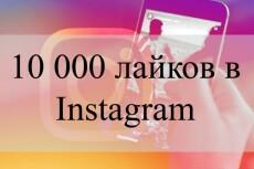 Настрою рекламу в Яндекс. Директ 4 - kwork.ru