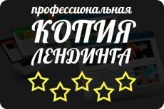 Скопировать лендинг, одностраничный сайт 41 - kwork.ru