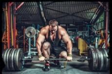 Тренировочная программа на набор чистой мышечной массы 6 - kwork.ru
