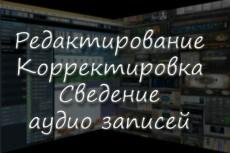 Тюн вокала, выравнивание по нотам и ритмически 16 - kwork.ru