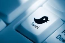 Добавлю ваш аккаунт в Твиттер в 50 разных списков 17 - kwork.ru
