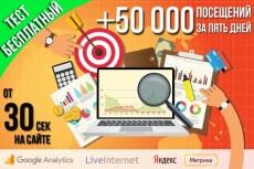 50 тысяч уникальных посетителей в течение 25 дней 18 - kwork.ru