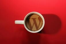 Помогу с сайтом на Wordpress, Diafan CMS 22 - kwork.ru