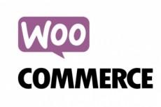 Создам интернет-магазин на Woocommerce 13 - kwork.ru