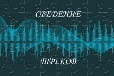 Запишу голос для песни. Придумаю вокальную партию. Опыт 8 лет 24 - kwork.ru