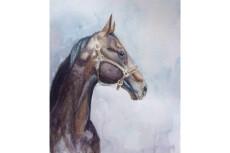 Нарисую иллюстрацию или портрет 40 - kwork.ru