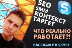 Консультация в Skype по продвижению вашего сайта на Wordpress 7 - kwork.ru