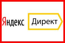 Профессиональная настройка Яндекс. Директ + 1 неделя ведения бесплатно 14 - kwork.ru