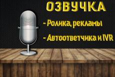Мой голос привлечет клиентов в ваш бизнес. Автоответчик, реклама, IVR 7 - kwork.ru