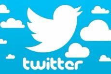 Прокачаю ваш Твиттер аккаунт: +2500 фолловеров (подписчиков) в Twitter 4 - kwork.ru