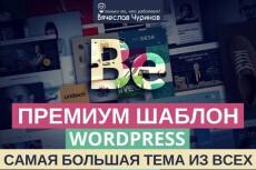 Создание авторского блога на Wordpress для развития брэнда 14 - kwork.ru