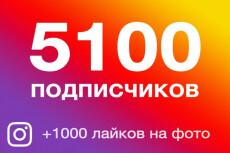 10000 подписчиков в Инстаграм + 5 000 лайков 5 - kwork.ru