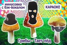 Музыкальная композиция 11 - kwork.ru