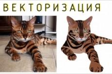 Логотип. Отрисовка в векторе 52 - kwork.ru