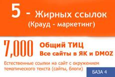 Ссылки c более 1000 сайтов с ТИЦ 10-650 28 - kwork.ru