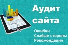 Проведу комплексный Аудит Вашего сайта до 100 факторов ранжирования 16 - kwork.ru