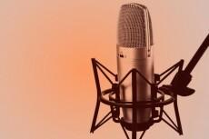 Запись аудио книг 9 - kwork.ru