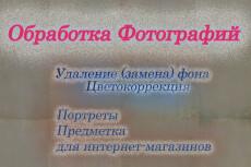 Профессиональная обтравка, удаление, замена фона 15 - kwork.ru