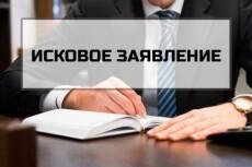 Составлю исковое заявление по ГПК РФ, АПК РФ, КАС РФ 22 - kwork.ru
