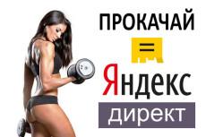 Настройка Яндекс Директ РСЯ и Поиск  + в подарок аудит через 3 дня 5 - kwork.ru