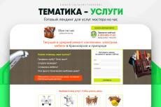 Скопировать Landing page, одностраничный сайт, посадочную страницу 230 - kwork.ru