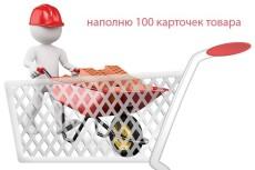 Наполнение магазина товаром 12 - kwork.ru