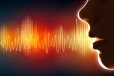 Редактирование и коррекция аудио 8 - kwork.ru