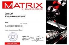Сделаю дизайн сертификата, диплома, грамоты 11 - kwork.ru