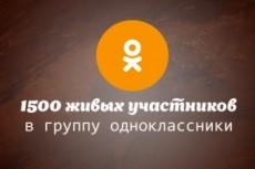 Участники в группу в Одноклассники 19 - kwork.ru