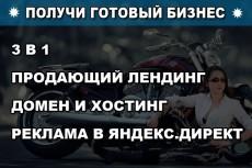 Профессиональная настройка Яндекс. Директа. Придут заинтересованные клиенты 5 - kwork.ru