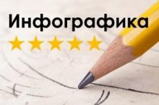 Сделаю небольшую инфографику 20 - kwork.ru