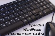 Заполнение нулевой отчетности 8 - kwork.ru
