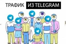 50 тысяч уникальных посетителей в течение 25 дней 24 - kwork.ru