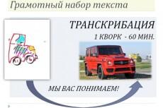 Переведу ваши записи в текст 32 - kwork.ru