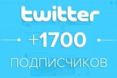 1700 подписчиков в ваш аккаунт Twitter 11 - kwork.ru