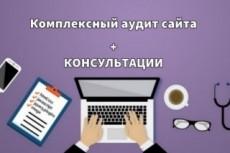 Проведу комплексный Аудит Вашего сайта до 100 факторов ранжирования 18 - kwork.ru