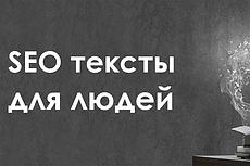 LSI, SEO текст для выхода в ТОП и продаж 12 - kwork.ru