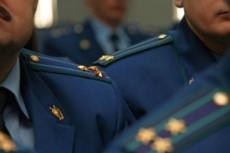 Проверю наличие данных о неуплаченных штрафах за нарушения ПДД 6 - kwork.ru