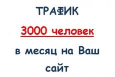 300 живых пользователй в группу ВК 4 - kwork.ru
