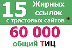 20 + 20 жирные вечные ссылки 40 трастовых сайтов с ИКС выше 1000 10 - kwork.ru