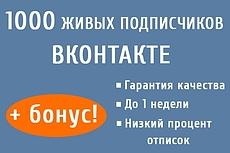 1000 качественных подписчиков -Продвижение групп Вконтакте + бонус 10 - kwork.ru